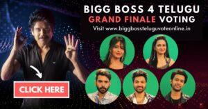 bigg boss 4 telugu finale voting